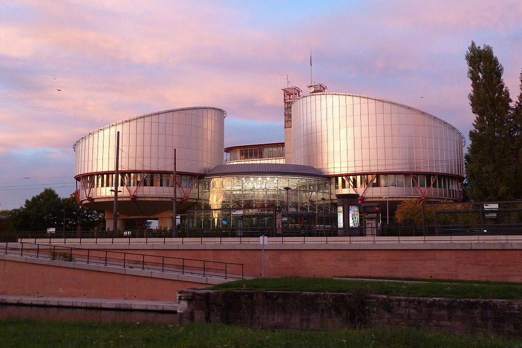 European Court of Human Rights finds vulnerable Zimbabwean national unlawfully detained by Home Office