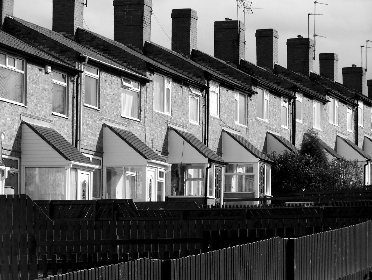 Right to rent comes into force today