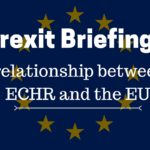 Relationship between the ECHR and the EU - paper 6 (2)