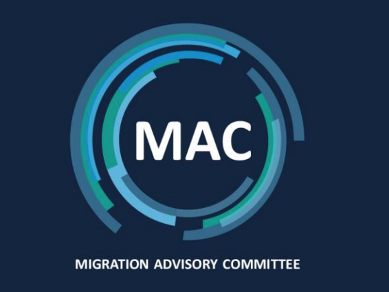 Expert immigration committee left understaffed for over a year