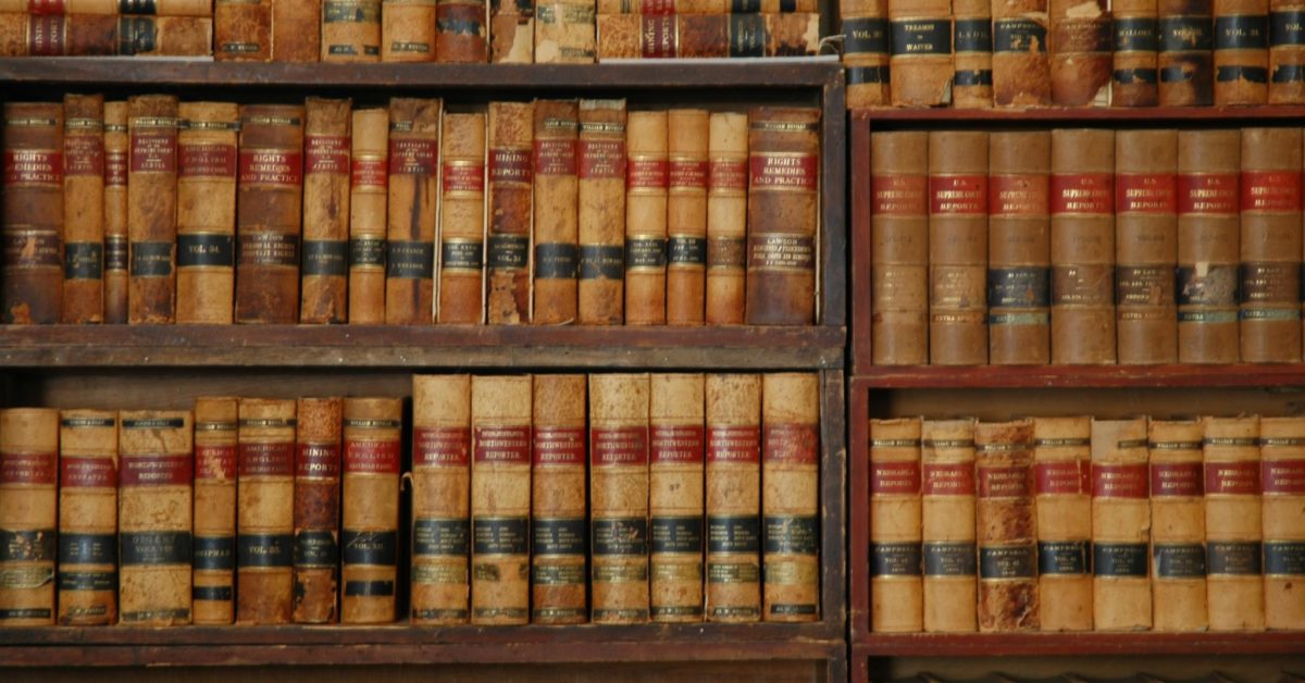 Family court proceedings and immigration decisions