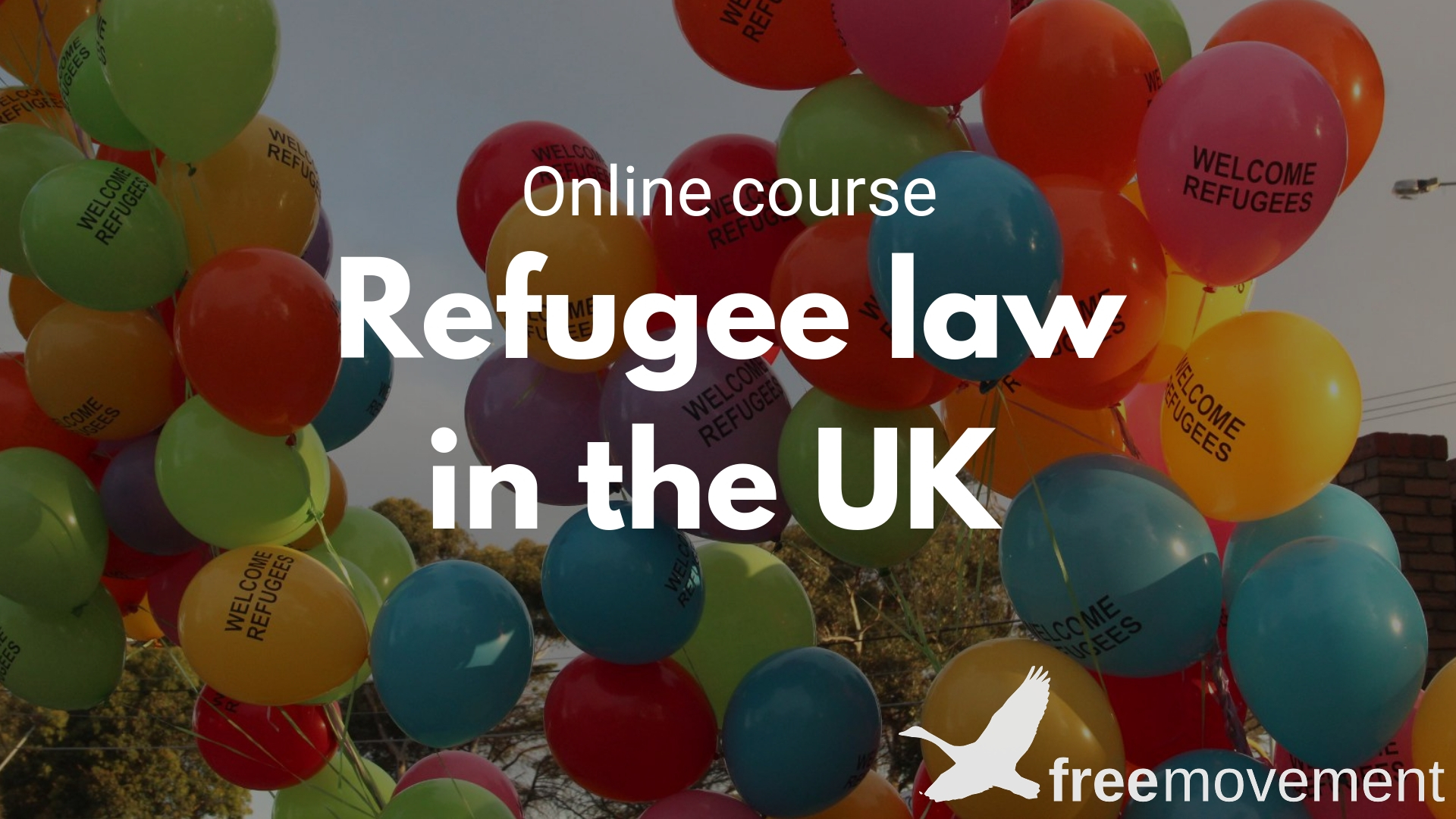 Refugee law course