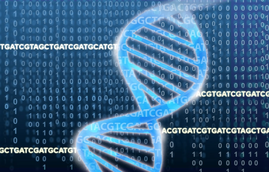 Substantial update to immigration policy on DNA evidence