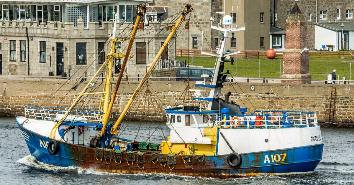 Government ignores its own experts to sever fishing industry lifeline